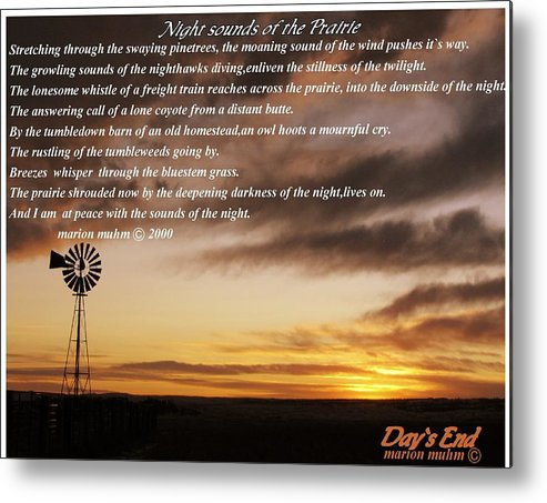 Landscape Metal Print featuring the photograph Night Sounds Of The Prairie by Marion Muhm