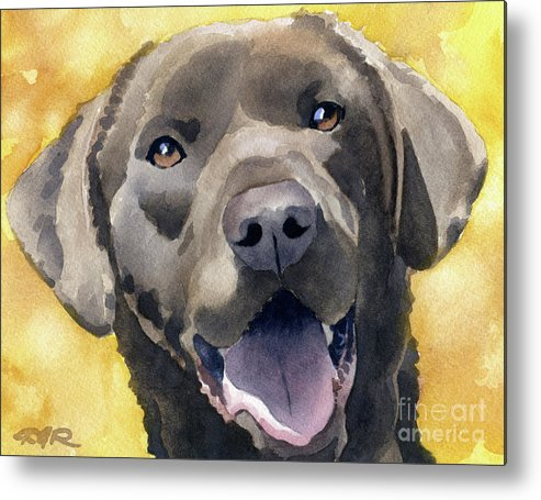 Chocolate Lab Metal Print featuring the painting Chocolate Lab by David Rogers