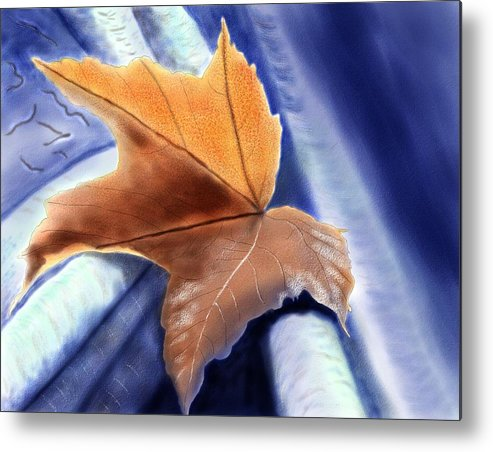 Metal Print featuring the painting Autumn Leaf by John Shioli