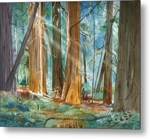 Redwoods Metal Print featuring the painting Avenue Of The Giants by John Norman Stewart