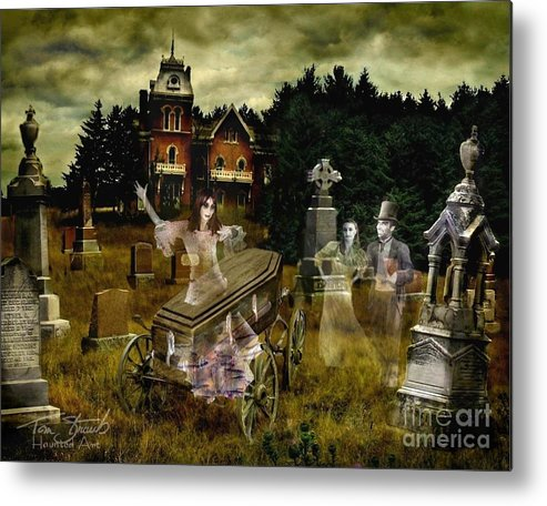 Ghosts Metal Print featuring the photograph Black Fly by Tom Straub