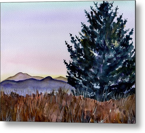 Watercolor Metal Print featuring the painting Blue Spruce by Brenda Owen
