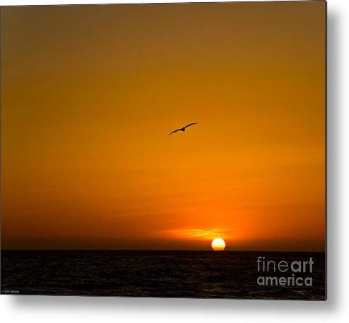 Beach Metal Print featuring the photograph California Sunset by Carl Jackson
