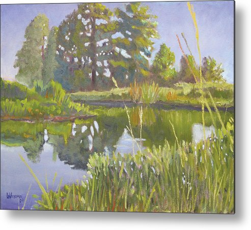 River Metal Print featuring the painting Cross Creek by D T LaVercombe