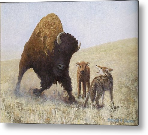 Bison Metal Print featuring the painting Defending A Young One by Steven Welch