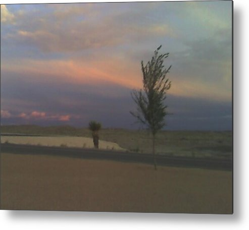 Photo Metal Print featuring the photograph Dusk by Alycia Baca