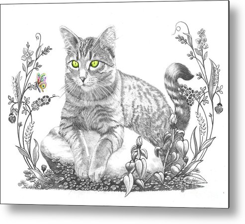 Cat Metal Print featuring the drawing House Cat by Murphy Elliott