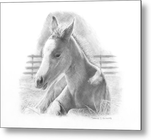 Horse Metal Print featuring the drawing Lily by Douglas Kochanski