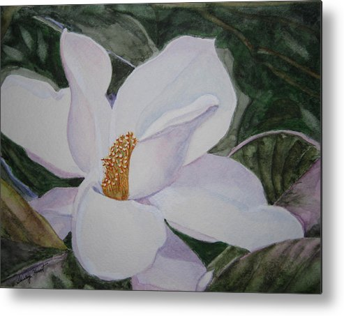 Nature Metal Print featuring the painting Magnificent Magnolia by Shirley Braithwaite Hunt
