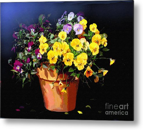 Pansy. Still Life Metal Print featuring the painting Mini Pansy Pot by Robert Foster
