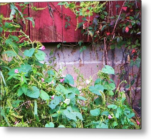 Flowers Metal Print featuring the photograph Old Red Barn II by Cindy Gacha