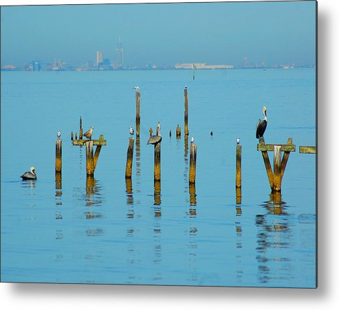 Pelican Metal Print featuring the digital art Pelican And Mobile by Michael Thomas