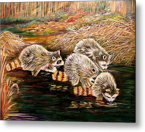 Raccoons Metal Print featuring the painting Raccoons At Sunrise by Carol Allen Anfinsen