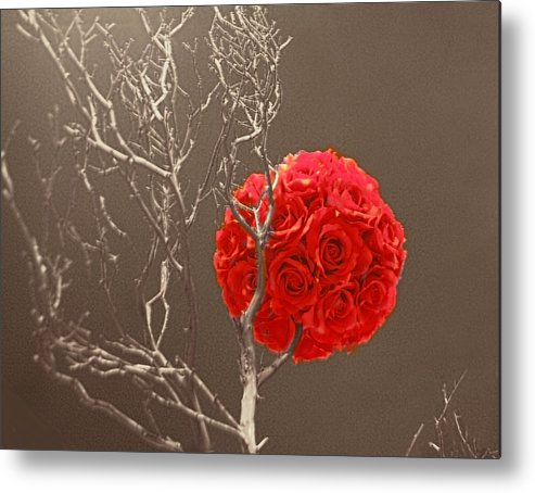 Art Metal Print featuring the photograph Red Rose Ball In Field Of Gray by Linda Phelps