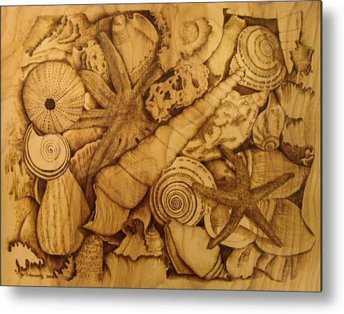 Pyrography; Sepia; Shells; Sea Shells; Starfish; Ocean; Sea; Underwater; Sea Life; Metal Print featuring the pyrography Settled by Jo Schwartz