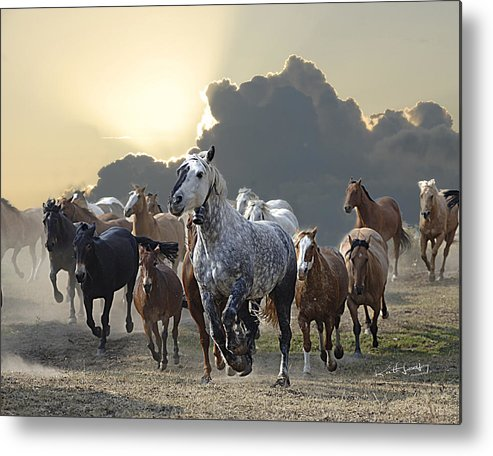 Horses Metal Print featuring the photograph Sunset Run by Keith Lovejoy