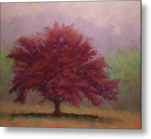 Pastel Metal Print featuring the painting The Feather Tree by Paula Ann Ford