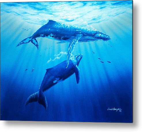 Whale Metal Print featuring the painting Together by Daniel Bergren