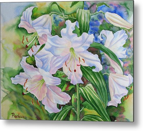 Watercolor Metal Print featuring the painting White Lily. 2007 by Natalia Piacheva