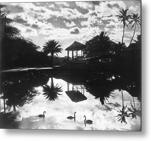 1930 Metal Print featuring the photograph A Tranquil Scene In Hawaii by Underwood Archives