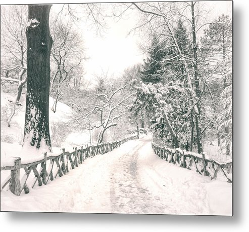 Nyc Metal Print featuring the photograph Central Park Winter Landscape by Vivienne Gucwa
