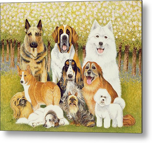 Dog Metal Print featuring the painting Dogs In May by Pat Scott