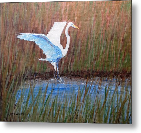 Egret Metal Print featuring the painting Egret Landing by Keith Wilkie