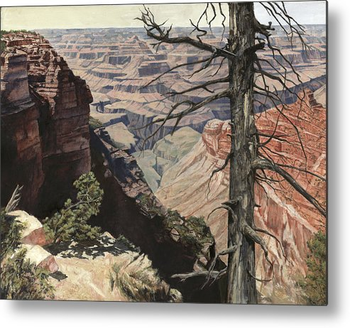 Don Langeneckert Metal Print featuring the painting Grand Canyon View Weathered Tree Right Side by Don Langeneckert
