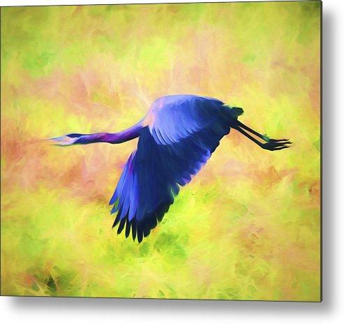 Great Blue Heron Metal Print featuring the mixed media Great Blue Heron In Flight Art by Priya Ghose
