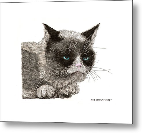 Grumpy Cat Art Metal Print featuring the drawing Grumpy Pussy Cat by Jack Pumphrey