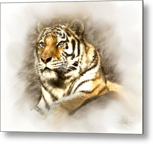 Animal Metal Print featuring the photograph I Should Be King by Arne Hansen