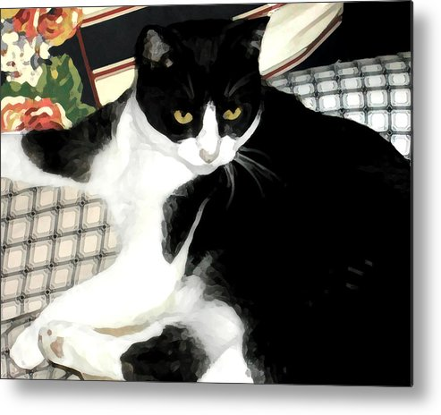Black And White Metal Print featuring the photograph Kitty On His Perch by Jeanne A Martin