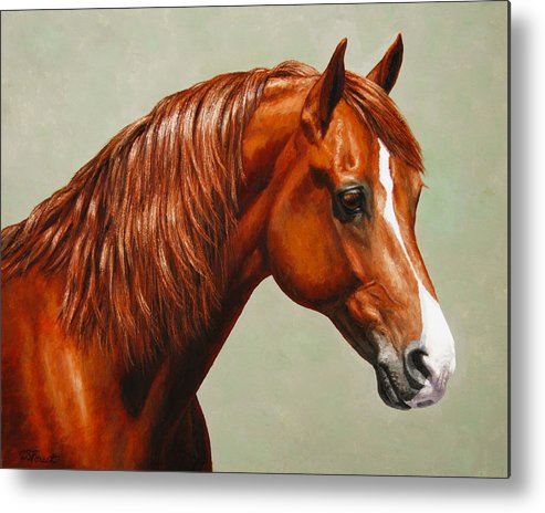 Horse Metal Print featuring the painting Morgan Horse - Flame by Crista Forest