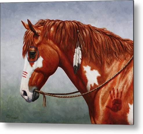 Horse Metal Print featuring the painting Native American War Horse by Crista Forest
