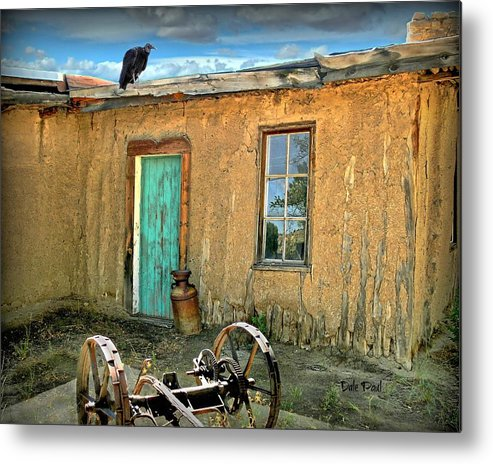 Buzzard Metal Print featuring the photograph Nobody Home by Dale Paul