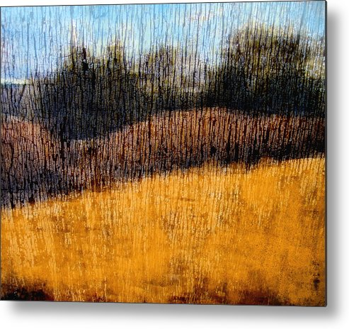 Landscape Metal Print featuring the photograph Oklahoma Prairie Landscape by Ann Powell