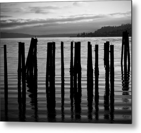 Black And White Metal Print featuring the photograph Old Pilings On Puget Sound - Tacoma - Washington - August 2013 by Steve G Bisig