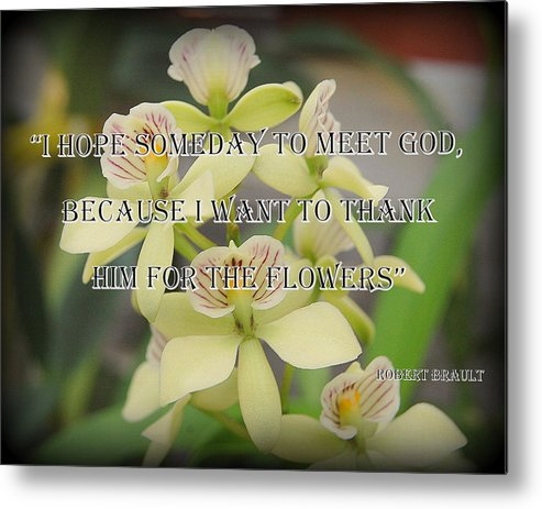 Orchid Metal Print featuring the photograph Orchids With Robert Brault Quote by James DeFazio