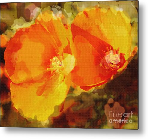 Abstract California Poppies Photographs Canvas Prints Canvas Metal Print featuring the photograph Poppies On Fire by Artist and Photographer Laura Wrede