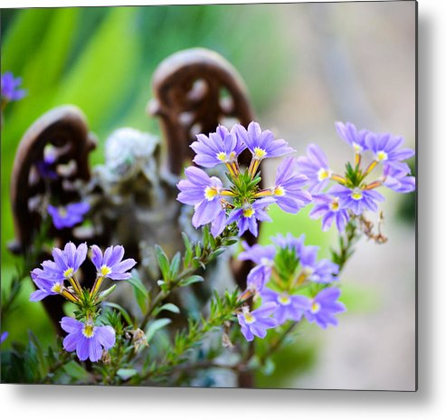 Purple Flower Metal Print featuring the photograph Purple Flowered Angel by David Fishter