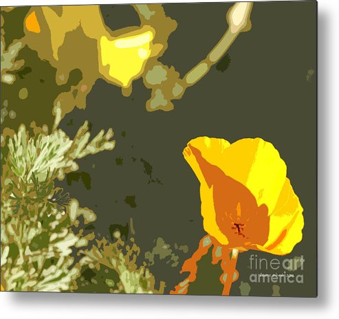 Abstract California Poppies Photographs Canvas Prints Metal Print featuring the photograph Retro Abstract Poppies 4 by Artist and Photographer Laura Wrede