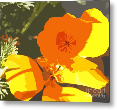 Abstract California Poppies Metal Print featuring the photograph Retro Abstract Poppies by Artist and Photographer Laura Wrede