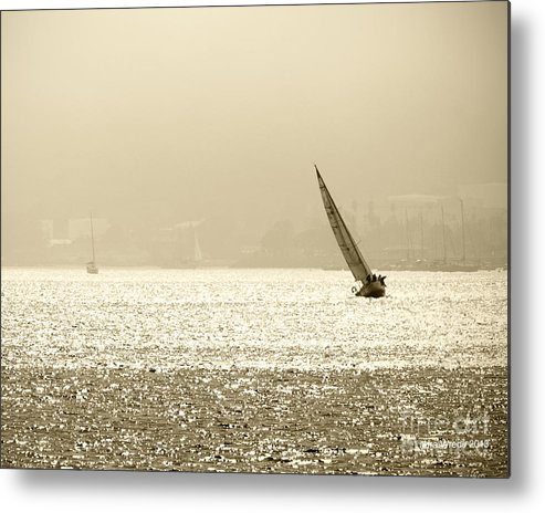 Sailing In San Diego Metal Print featuring the photograph Sailing In San Diego Harbor by Artist and Photographer Laura Wrede