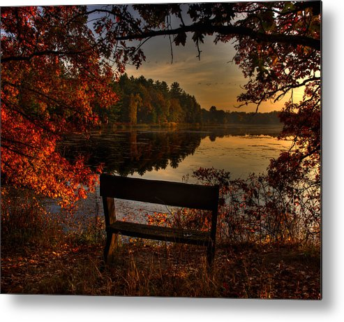Scenic View Metal Print featuring the photograph Scenic View by Thomas Young