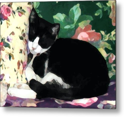 Black And White Metal Print featuring the photograph Sleeping Kitty by Jeanne A Martin