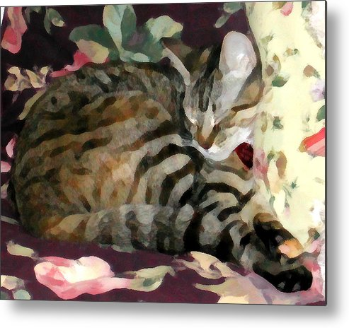 Tabby Cat Metal Print featuring the photograph Sleeping Tabby by Jeanne A Martin