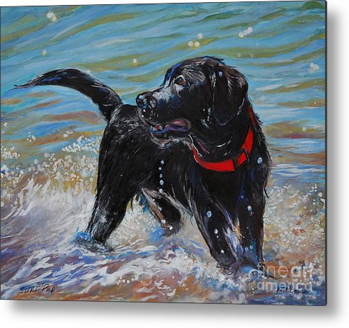 Black Labrador Retriever Puppy Metal Print featuring the painting Surf Pup by Molly Poole