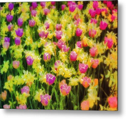 Digital Art Metal Print featuring the digital art Tulips And Daffodils by Jill Balsam