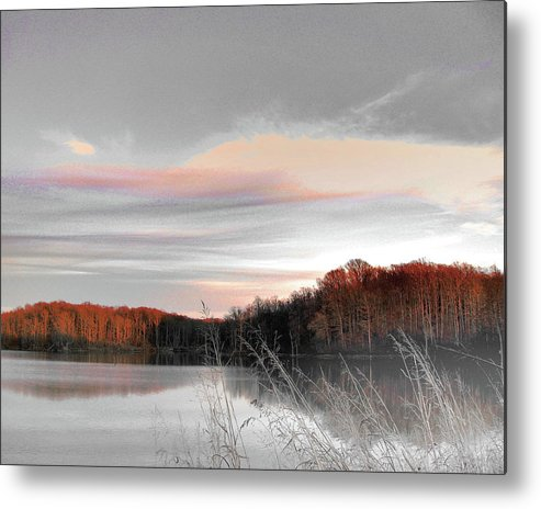 Village Creek State Park Metal Print featuring the digital art Village Creek Ar Morning by Lizi Beard-Ward
