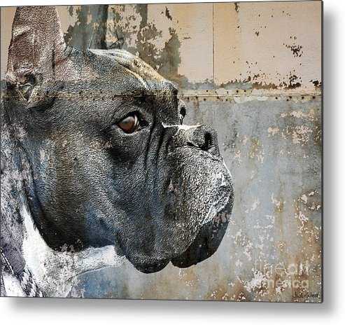 Dog Metal Print featuring the digital art Watchful by Judy Wood